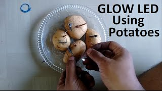 How to Produce Electricity using Potatoes   Tomatoes   Lemon -Homemade