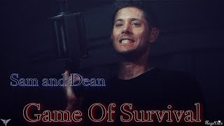 Sam and Dean - Game of Survival (Song/Video request)