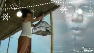 নিথুয়া পাথারে নেমেছি বন্ধুরে ধর বন্ধু আমার কেহ নাই।।HD...jr tuni