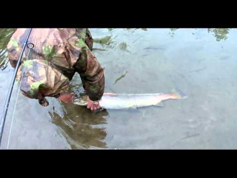 рыбалка на воронке