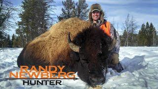 Hunting Montana Buffalo with Randy Newberg - Free Range Bison (FT S1 E9)