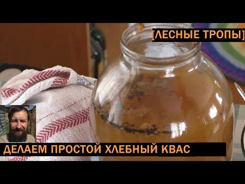 Приготовления хлебного кваса в домашних условиях из
