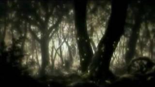 Björk AMV - Pagan Poetry