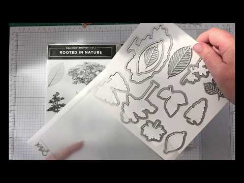 Xxx Mp4 26 Homemade Card Quick Tutorial Using Stampin Up Rooted In Nature 3gp Sex