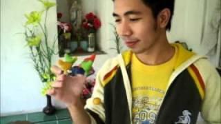 Chicken Joy - Jimcen Bagsik