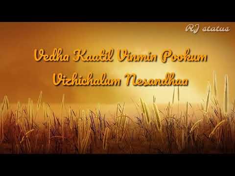 Xxx Mp4 Aala Poran Tamizhan Lyrics Download👇 Mersal Tamil Whatsapp Status RJ Status 3gp Sex