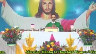 Holy Eucharist : Rev.Fr.Anil Kiran Fernandes,SVD ( 08.07.2017)