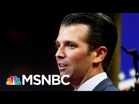 Collusion's No Big Deal? That's What Some House Republicans Say | The 11th Hour | MSNBC