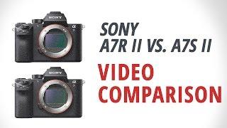 Sony a7R II vs. a7S II Part 2: Video Comparison