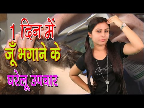 1 рджрд┐рди рдореЗрдВ рдЬреВрдБ рднрдЧрд╛рдиреЗ рдХреЗ рдШрд░реЗрд▓реВ рдЙрдкрдЪрд╛рд░ Home Remedies For Head Lice | Juon Ko Bhagane Ke Upchar - Tips