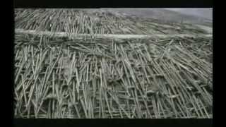Vulcani   ( Documentario )