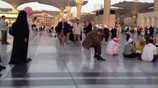 رحلة في المسجد النبوي الشريف بالمدينة المنورة
