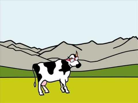 La vaca estudiosa
