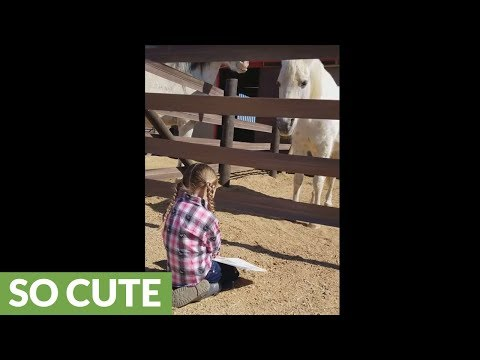 Captivated horse listens to little girl reading story