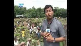 Unhyginic (Vejal Food) Fruits-Banana  Bangladesh Liver Cirrhosis-Part , ETV- Akhil Podder