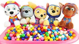 Five Little Monkeys Jumping on the Bed Paw Patrol Sea Patrol Twinkle Twinkle Gumball Bath Surprises