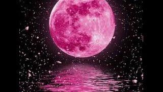 Pink Moon Mandela Effect