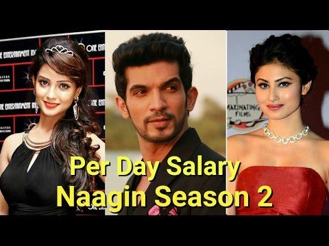 Per Day Salary Of Naagin Season 2 Actors
