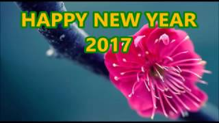 Happy New Year 2017 Greetings/ Whatsapp video/ E card/ New Year Wishes Message HD Video