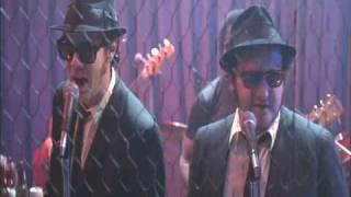 Stand By Your Man -Blues Brothers