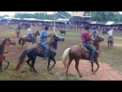 Xxx Mp4 Carnavalito Cornea Un Caballo Corrida De Sotuta Yucatan 2017 Rancho El Mirador 3gp Sex
