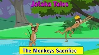 Jataka Tales in Hindi | Monkey Kings Sacrifice | Hindi Jatak Kathayen HD