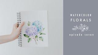 How To Paint Hydrangeas: Watercolor Florals Episode Seven