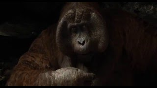 El Libro de la Selva (The Jungle Book)   El Rey Louie