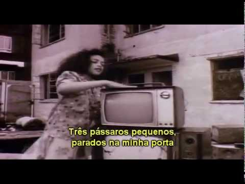 Bob Marley - Three Little Birds (Tradução - Legendado PT/BR)