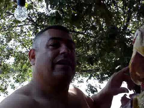 FÉRIAS NO RIO IVINHEMA MS PINTADO DE 15Kg E DOURADO DE 13Kg