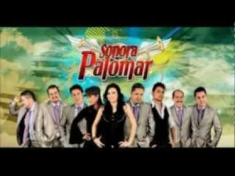 Dj Beat & Sonora Palomar - Palomar Mix