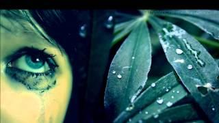 Delerium- Flowers become Screens