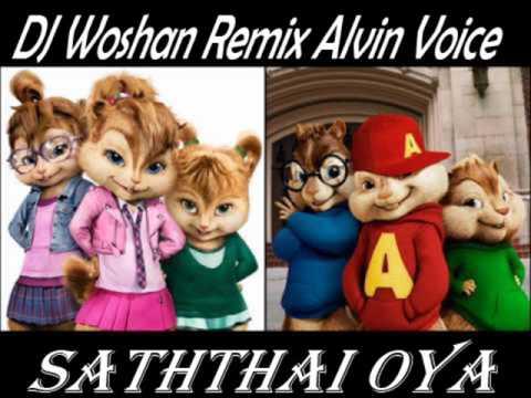 Xxx Mp4 Saththai Oya DJ Woshan Mix Alvin Voice 3gp Sex