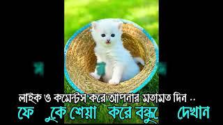 new islamic song 2018 - mayer koborer shathe amai kobor dio vai - bangla islamic song new 2017 - 70