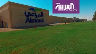 كيف تساهم المراعي بتوفير الأمن الغذائي في السعودية؟