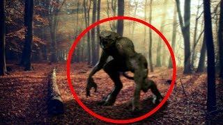 5 كائنات غامضة يُعتقد بوجودها في كندا..!!