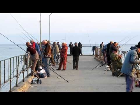 ловля на чорном море видео