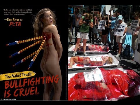 Top 10 Ridiculously Stupid PETA Campaigns of All Time