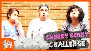 CHUBBY BUNNY II   DeBarrio