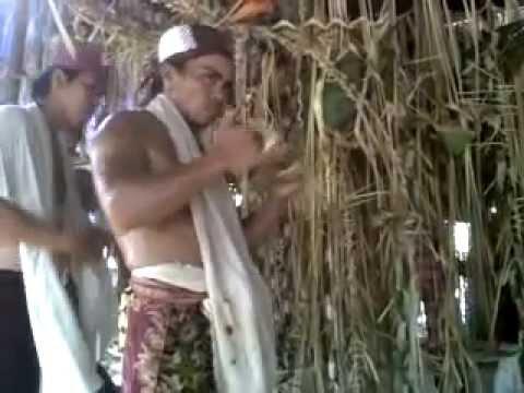Xxx Mp4 Pesta Panen Dayak Balangan Kalimantan Selatan 3gp Sex