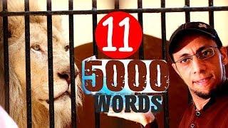 5000 كلمة إنجليزية هامة  بطريقة لم يسبق لها مثيل الدرس 11   داخل حديقة الحيوان