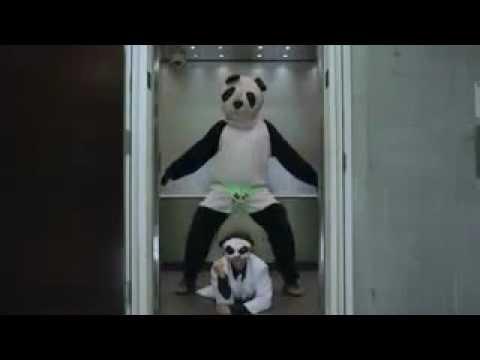 Xxx Mp4 The White Panda Vs Gangnam Style 강남스타일 3gp Sex
