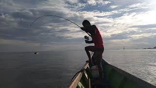 Spot ikan Arut Tarakan