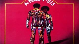 The Nite-Liters - A-Nal-Y--Sis LP 1973
