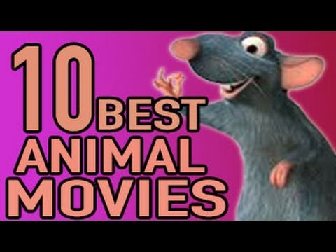 Best Animal Movies