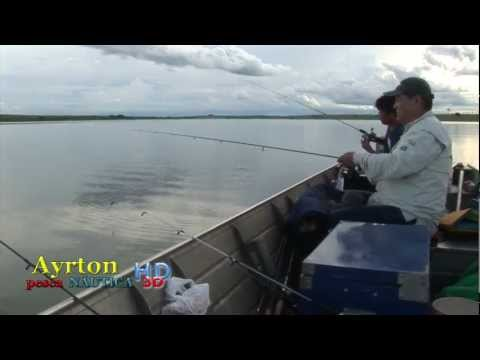 AYRTON PESCA FISH TV PESCA CORVINA RIO TIETÊ ARAÇATUBA SP YOU TUBE