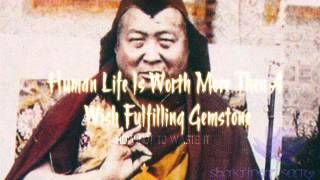 Human Life Is Worth More Then A Wish-Fulfilling Gemstone