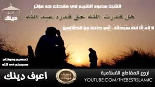 قصة الذئب اللذي اخبر الاعرابي عن مكان النبي محمد صلى الله عليه وسلم HD