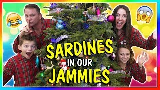 SARDINES IN OUR JAMMIES | HIDE AND SEEK | We Are The Davises