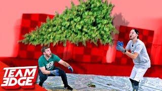 Christmas Tree Flip!!
